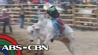 TV Patrol North Mindanao - Rodeo & Livestock show sa Cagayan de Oro at Bukidnon
