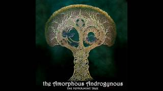 Amorphous Androgynous - The Peppermint Tree and Seeds of Superconsciousness (Full Album)