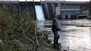 Salmon Fishing Ireland 2014 ( HD )