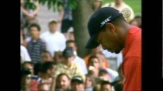 Tiger Woods get apple thrown at him