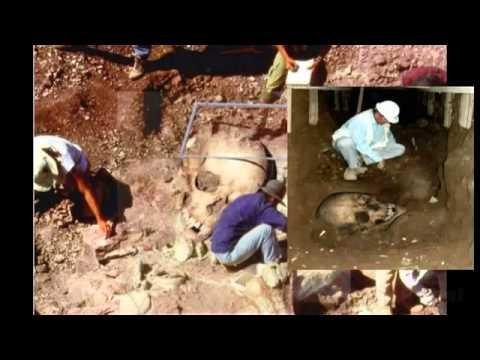 """Potholer54: """"Golden Crocoduck nominees 2012 (Part 1)"""""""