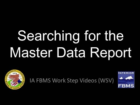 Searching for the Master Data Report