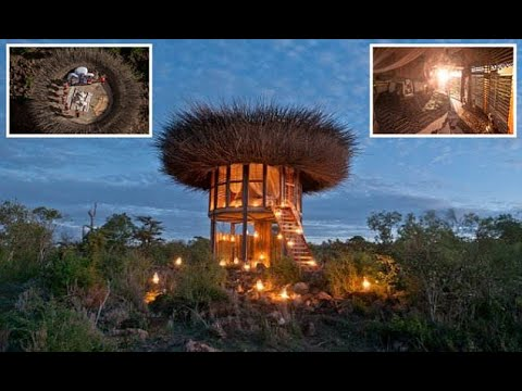 The Kenyan safari suite that resembles a bird's nest  - Travel Guide vs Booking