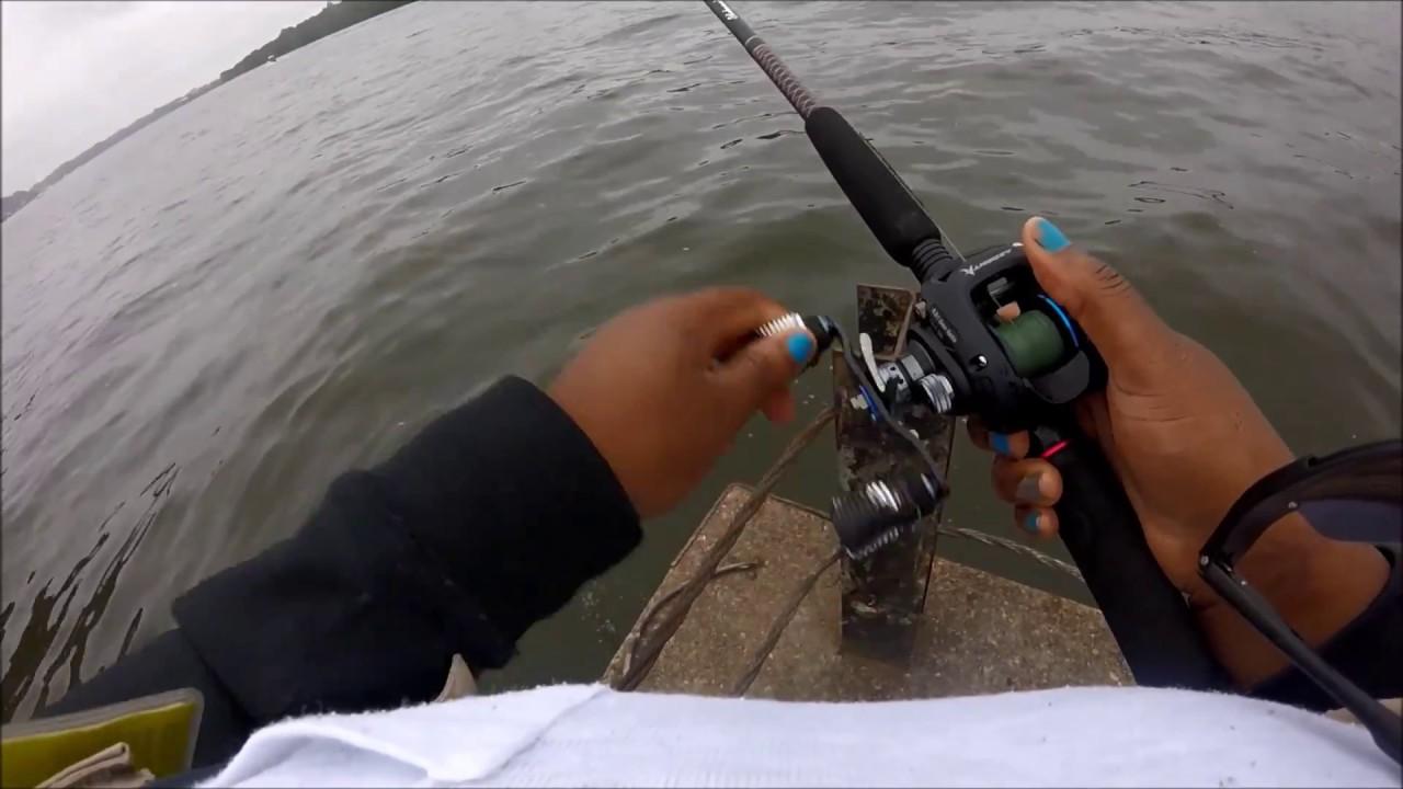 Delaware River Striped Bass