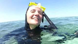 La Grande Barriera Corallina | Ale&Max | Honeymoon02