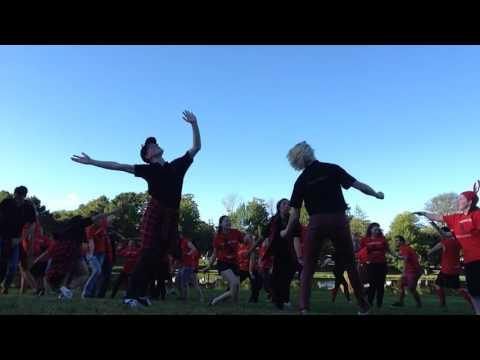 Karaoke Barbecue - Thornton House Dance - Mount Allison Orientation 2016