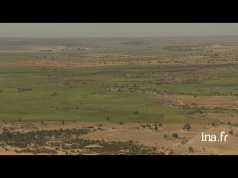 Mali : zones cultivées dans le delta du Niger
