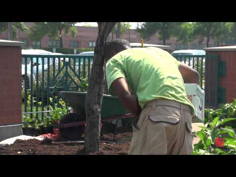 Cook County Boot Camp by Chicago News Co-Op
