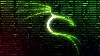 8 cool things to do after installing Kali Linux - The Hacking OS