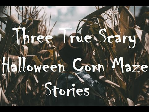 Three True Scary Halloween Corn Maze Stories