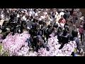 札幌に初夏告げるライラックまつり開幕 (2017/05/17)北海道新聞