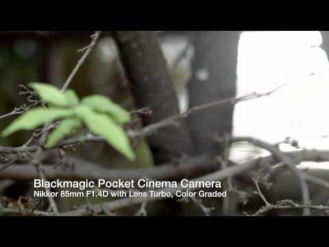 BMPCC with Nikon Lenses and Mitakon Lens Turbo Adapter