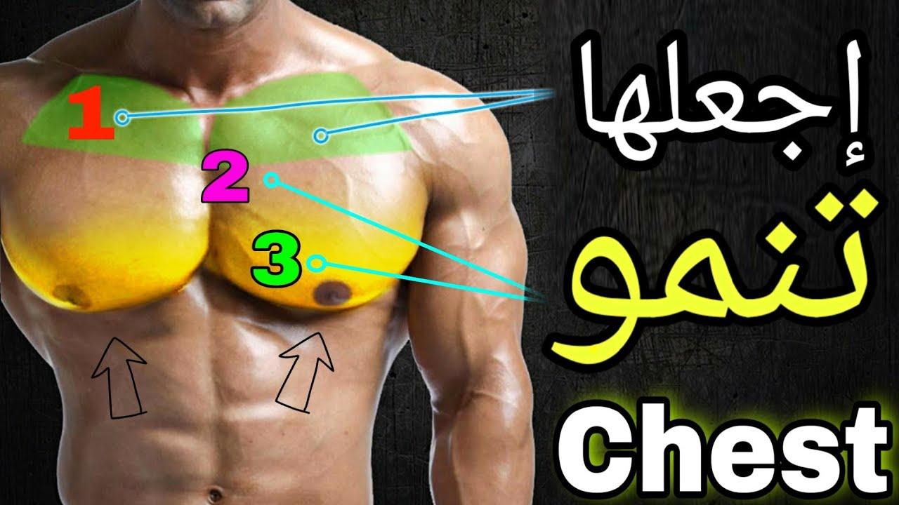 اقوى تمارين الصدرً وستهداف جميع مناطق الضعيفة كمال الاجسام - Chest Workout