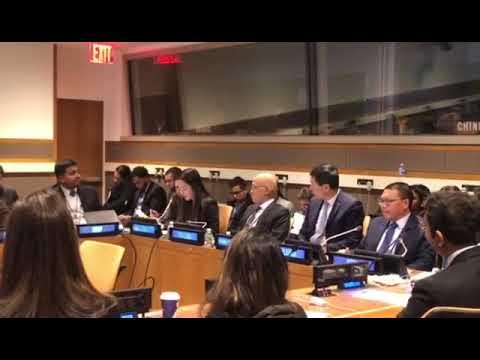 Ada Li at UN ECOSOC