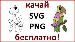 Попугай - картинка для рисованного видео или как нарисовать попугая