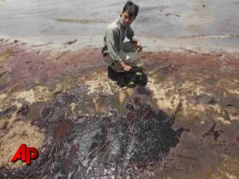 Oil Spill Images Capture Horror, Heartache