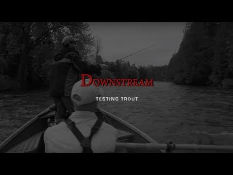 Downstream Testing Trout Trailer