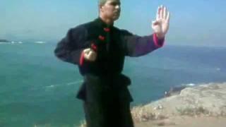 Aula de Kung Fu Wing Chun Prime - Sil Lin Tao no Arpoador - Rio de Janeiro Brasil - Ip Man HD