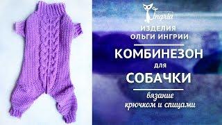 ๏̯͡๏ Одежда для чихуахуа ๏̯͡๏ Вязаный комбинезон для собаки