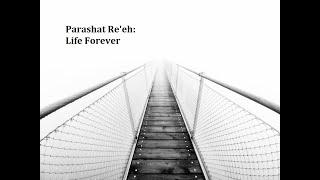 Jerusalem Lights Parashat Re'eh 5781: Life Forever