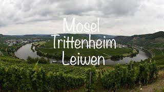 Moezel Trittenheim Leiwen