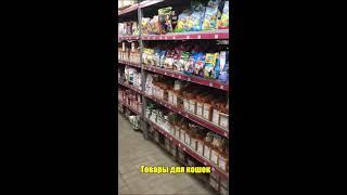 Зоомагазин-склад Пиги-Маркет г.Курск