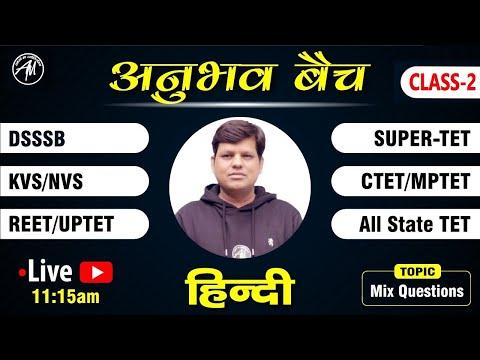 हिन्दी व्याकरण | MIX MCQ | CTET REET MPTET KVS DSSSB UPTET  SUPER-TET | Class-2 | Rahul Sir