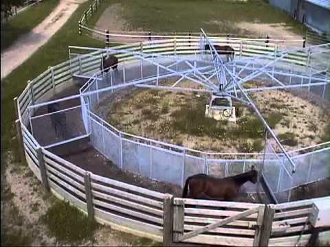 5 horse walker for sale used | Doovi