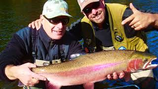 Dave Scadden's Rampaging Monster Steelhead