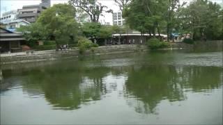 熊本地震1ゕ月(5/19)ー池の水も増えてきて復旧した水前寺公園。 水前...