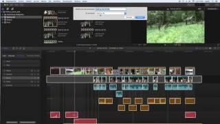 Crear Clip Compuesto con componentes audio
