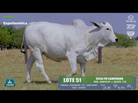 LOTE 51 - Leilão Genética Aditiva ExpoGenética 2019