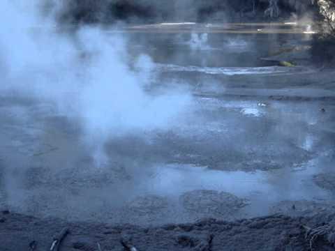 Geothermal activity near Rotorua, New Zealand
