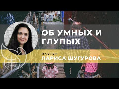 О глупых и умных 09.11.2019