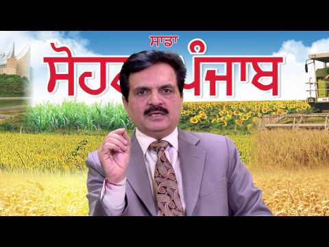 Sadda SOHNA Punjab Episode 2 - Role of Social Media for promoting Agri business in Punjab