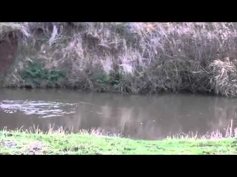River Roving With Rob Wootton