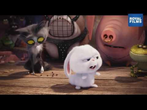La Vida Secreta De Las Mascotas Trailer Final