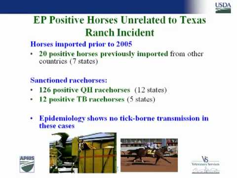 Dr Michael Greenlee - National Situation Report for Equine