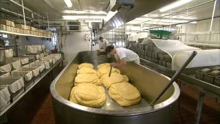 The Art of Cheesemaking