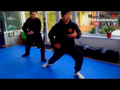 Tai Chi lesson with Master Wong