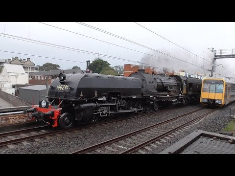 Australia: Sydney's Great Steam Train Race 2018