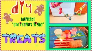 "DIY HAMSTER ""Christmas Light"" Treats Thumbnail"