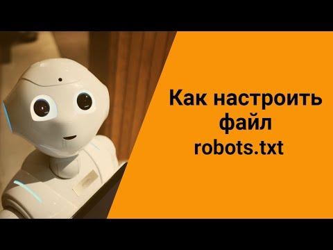 Как настроить файл Robots.txt для сайта