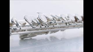 楽譜はこちら http://www.dlmarket.jp/products/detail/617196 【伴奏音...