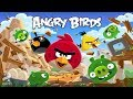 Amazing Angry Bird Games for android.