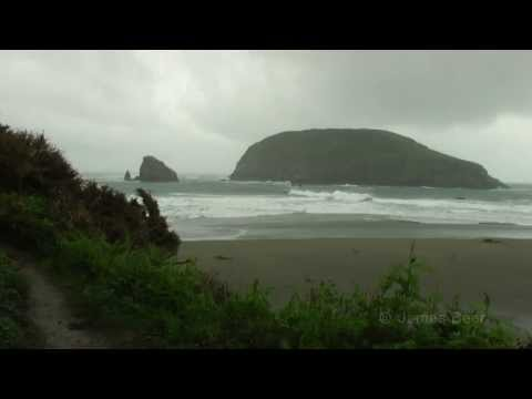Sights and Sounds of the Oregon Coast: Relaxing Ambiance - extended version