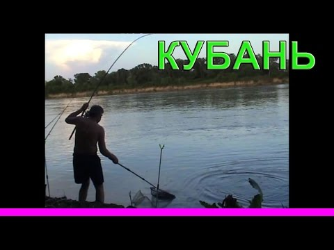 клев рыбы прогноз в новокубанск