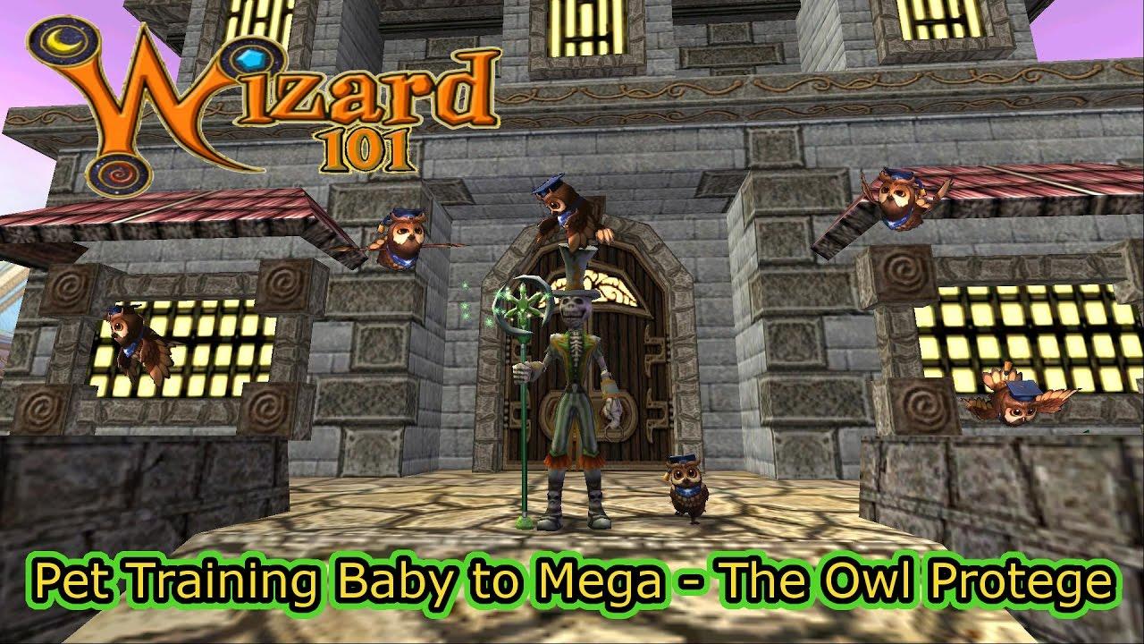 Wizard101 Pet Training The Owl Protege Baby To Mega Doovi