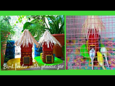 How To Make Bird Feeder With Bournvita jar