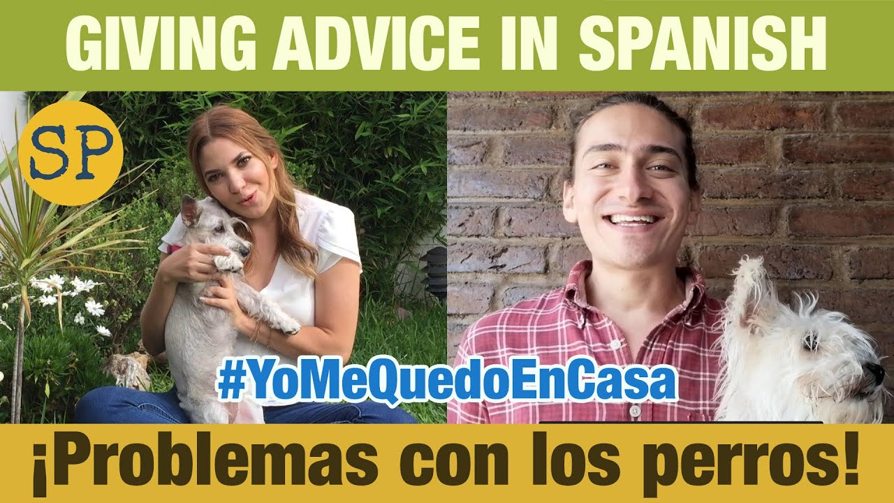 Giving Advice in Spanish | Problems with Dogs | Dar consejos